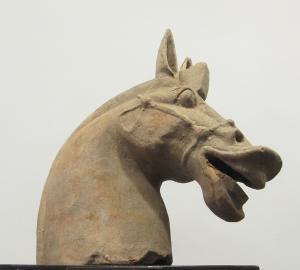testa cavallo – dinastia Han occidentali – II sec. a. C.
